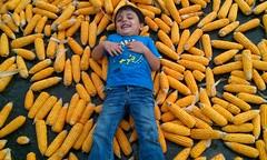 I LOVE CORNS (aammiirr) Tags: road boy smile corn punjab aammiirr