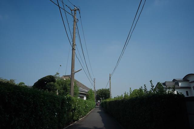 _0012079.jpg