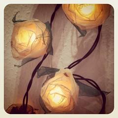 Fairy Lights! :D