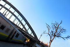 Viaduto Santa Tereza (O Estrangeiro) Tags: santa rio train canon do minas gerais photos powershot vale trem tereza doce ribeiro ferias horizonte belo viaduto g12 karib galileia