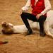 Haras des Bréviaires 27 mai 2011 (232)