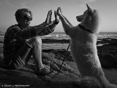 Seawolf. (Silent G Photography) Tags: ocean california ca people blackandwhite bw pets husky pacific explore pismobeach shellbeach explored markgvazdinskas silentgphotography