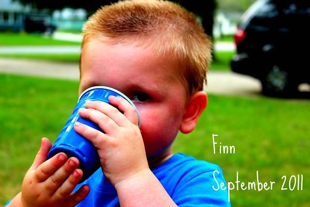 Finn.9-11#3