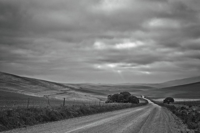 Sand road. Rain clouds. Near Caledon.