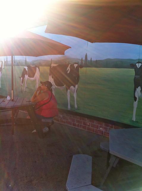 drollgirl dairy