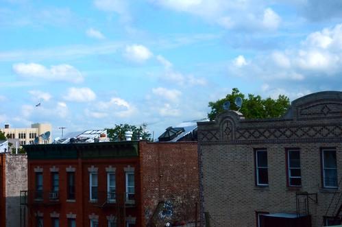 NY August 2011