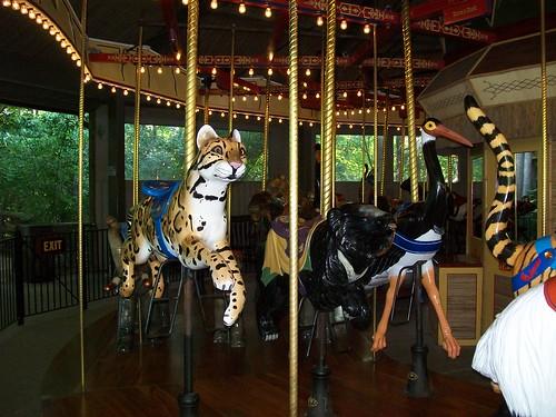 Zoo - 7-17-11 045