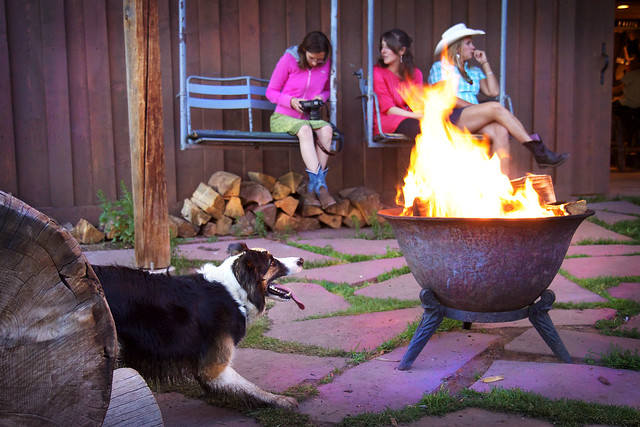 Black Mountain Colorado Dude Ranch Riley dog fire