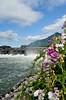 flower power (nosha) Tags: beautiful beauty river columbia pdx gorge pnw lightroom nortwest 2011 nosha 1855mmf3556 nikond7000 columbiarivergorgeusa
