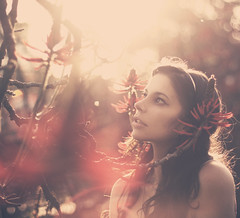 In The Red Forest (AnnuskA  - AnnA Theodora) Tags: flowers trees light red wild portrait woman colors girl beautiful face lady forest photography woods place bokeh branches things brazilian lovely intricate