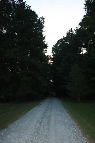 Walking in NC
