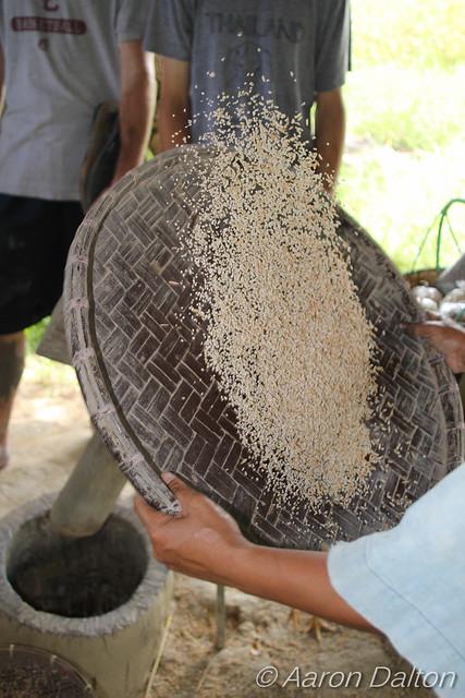 Flipping Rice