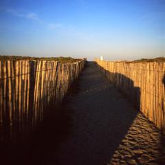 Sous la dune, la plage (philoufr) Tags: 6x6 square carré fujivelvia50 yashicamat124g epsonperfectionv500photo torreillesplage