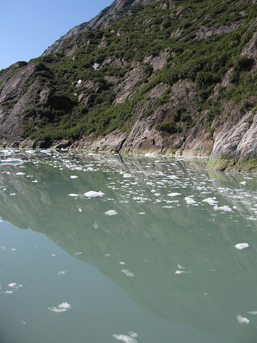 tracy arm reflection
