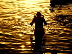 Holy Dip [Explored] (pallab seth) Tags: morning people india silhouette river religious asia candid traditional prayer religion culture belief varanasi ritual tradition bathing devotee hindu hinduism ganga gettyimages ganges banaras benaras explored holydip thebestsilhouettes pallabseth