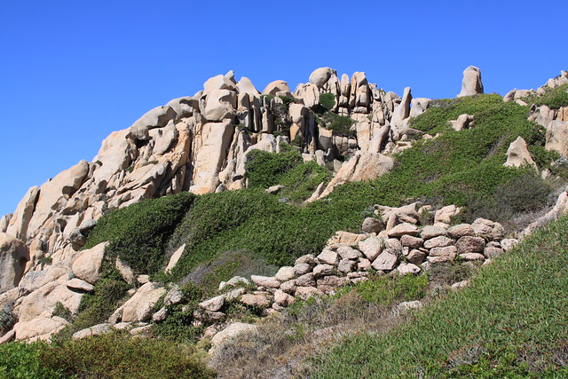 Great trekking habitat on Capo Testa...