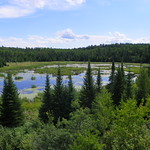 Beaver Pond thumbnail
