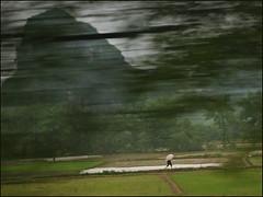 China Express (Christian Lagat) Tags: china man blur train umbrella landscape 中国 paysage karst flou chine homme guangxi 广西 ombrelle 廣西 nikkor1855mmf3556 nikond90 nikonpassion