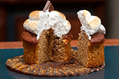 Smores Cupcake (Roger Weeks) Tags: orlando florida chocolate cupcake marshmallow waltdisneyworld smore wildernesslodge roaringfork grahamcracker
