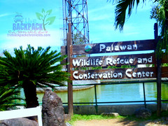 Palawan wildlife rescue and conservation center (Joanna Jane Liwag) Tags: puertoprincesa palawan butterflygarden crocodilefarm bakershill plazacuartel mitrasranch palawanwildliferescueandconservationcenter palawancitytour