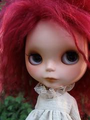 Lola  32/365 Bl♥ved