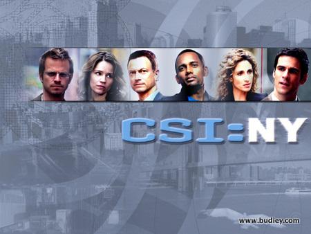 CSI-NY-team-csi-ny3