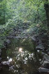 nature 033