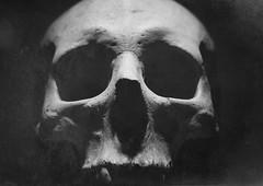 The End (sole) Tags: blackandwhite dark photography death skull photo fotografie mementomori mori dood sole carmengonzalez doodshoofd