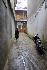 91_LAO82510002 (TC Yuen) Tags: vietnam sapa hmong terracefarming locai