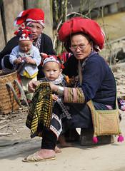 82_LAO75550105 (TC Yuen) Tags: vietnam sapa hmong terracefarming locai