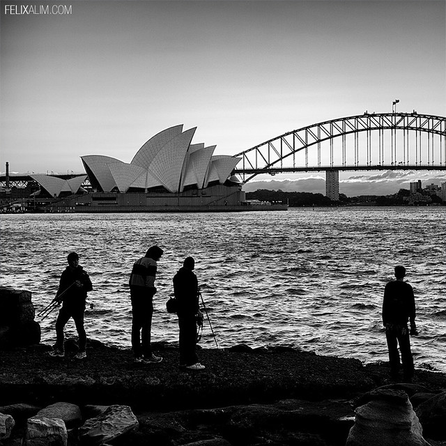 Sydney Opera House & Sydney Harbour Bridge