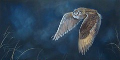 """Flight of the Eagle Owl"""