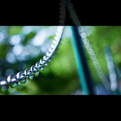 chain of bokeh (marianna armata) Tags: blue canada colour green metal fence aluminum bokeh geometry montreal chain hff siver leicasummicron50mmf2lens