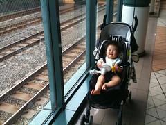 線路の横でなぜか笑うとらちゃん(2011/9/11)
