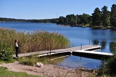 Last days of summer (Mercury dog) Tags: nikon sweden stockholm archipelago d5000