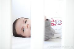 Henrique - 1 mes - 070911 - 00006 (Pablo Gama PG) Tags: boy baby infantil bebe menino 1month henrique 1mes macae recemnascido 1meses