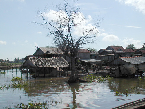 Flood plain, Cambodia, photo by Adelia Ribier, 2001