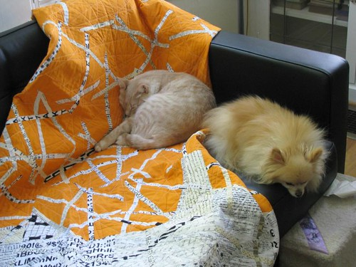 Paper Shredder Quilt, with sleeping beasts