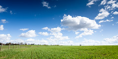 Bliss (F/H) Tags: blue summer sky green beautiful field grass weather clouds happy sunny bliss blissful