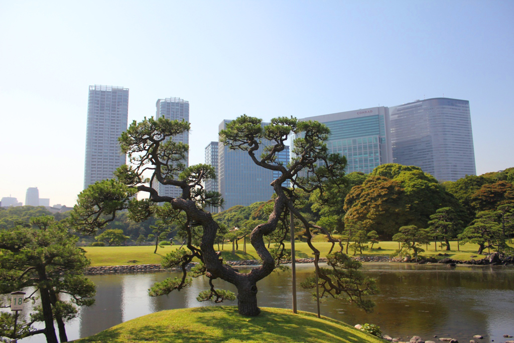 A walking guide of Hamamatsucho  (1)