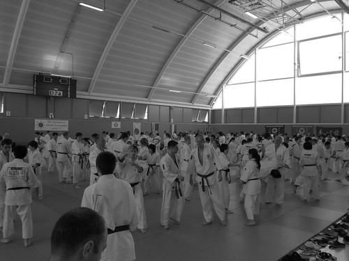 6050788902 839dfda905 9th International Aikido Tournament
