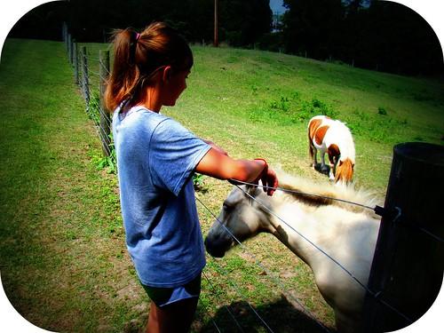 pettin' the horses at Betsy's