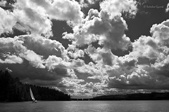 Sailing in Masuria (black-and-white), Poland (Radoslav_) Tags: summer vacation sky blackandwhite bw lake nature water monochrome clouds sailboat landscape holidays sailing wind yacht mazury peaceful poland polska inland yachting monocolor 11002 masuria superaplus aplusphoto inlandsailing gettypoland1