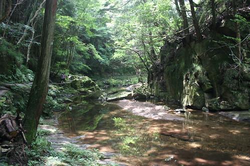 Reflected stream