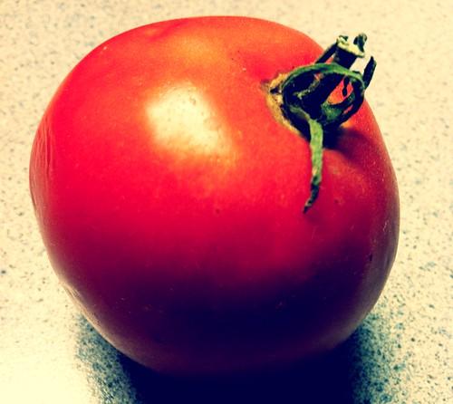 [234/365] Tomato by goaliej54