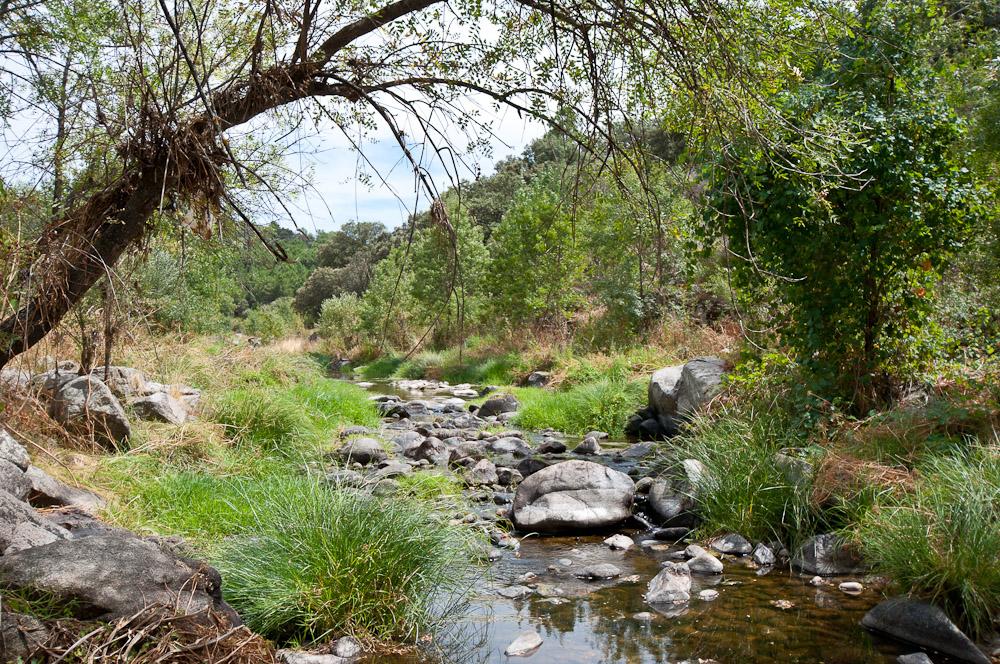 Baños Romanos Toledo:Podéis ver más fotos en el set de Flickr: Paseo por el Valle del