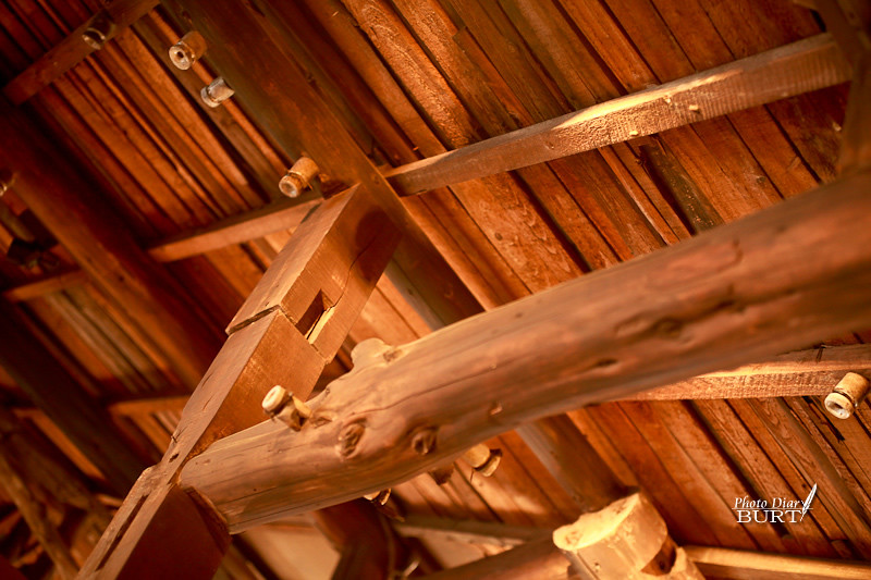屋頂的木結構