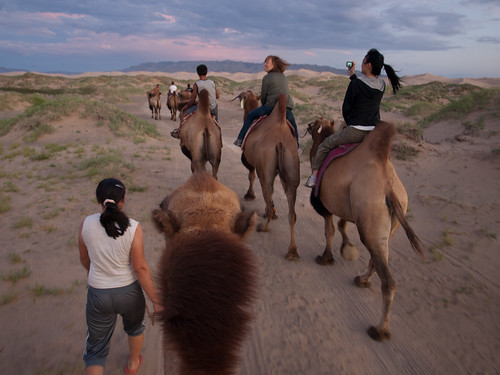 Desierto del Gobi 48