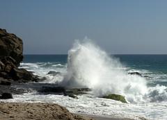 Aliso Beach Wave
