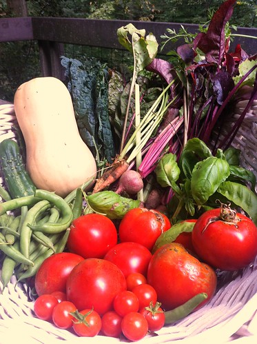 Garden Fresh Veggies!